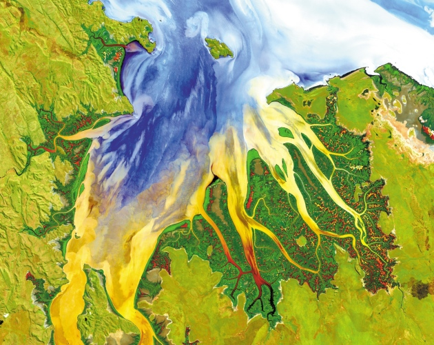 NATURE article: Define biodiversity indicators from space