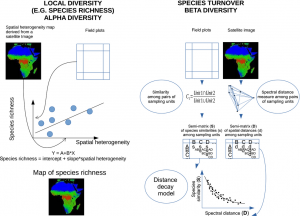 species diversity monitoring with remote sensing