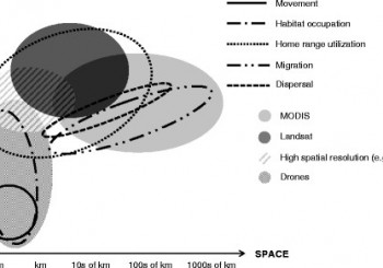 article on the opportunities of remote sensing in animal movement