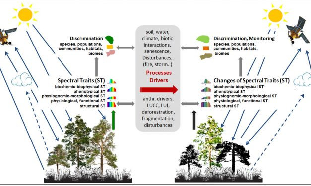Linking Earth Observation and taxonomic, structural and functional biodiversity: Local to ecosystem perspectives