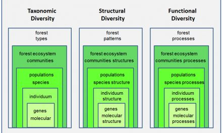 Understanding Forest Health with Remote Sensing -Part I – A Review of Spectral Traits, Processes and Remote-Sensing Characteristics.
