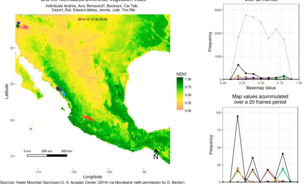 Remote Sensing Statistics for Animal Movement Data