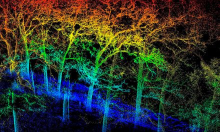 LiDAR and conservation guidelines