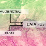 Satellite data fusion for ecology & conservation science