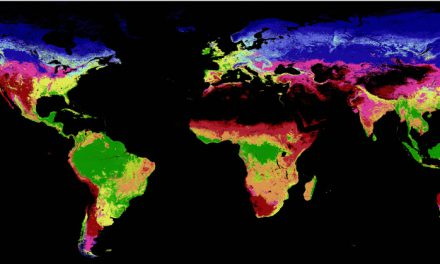 new global data for biodiversity analysis