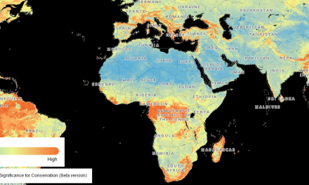 Nature Map Explorer – a platform for terrestrial biodiversity and ecosystem services