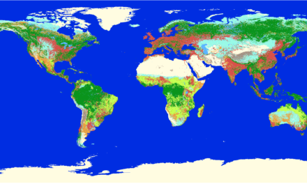A global map of terrestrial habitat types